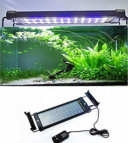 amzdeal aquarium