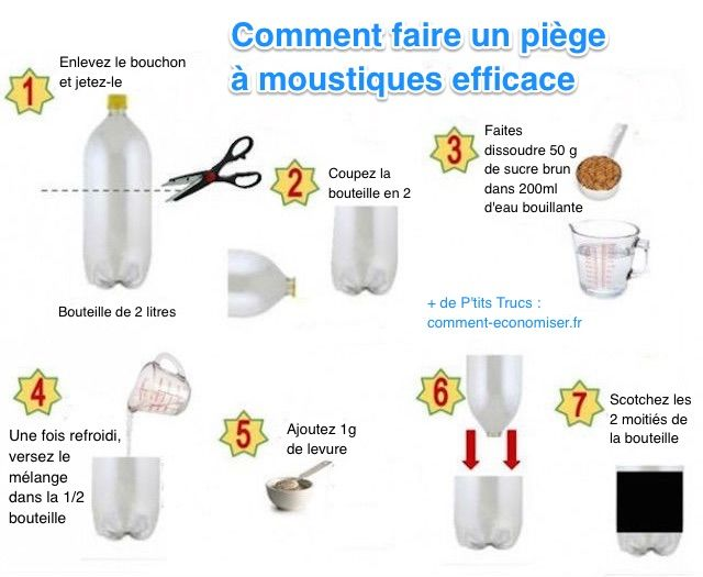 anti moustique efficace maison