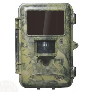 appareil photo automatique chasse