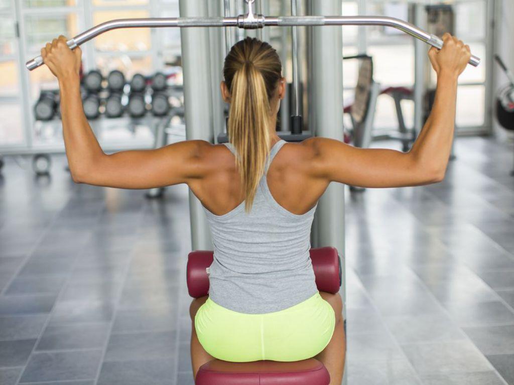 appareil pour se muscler le dos