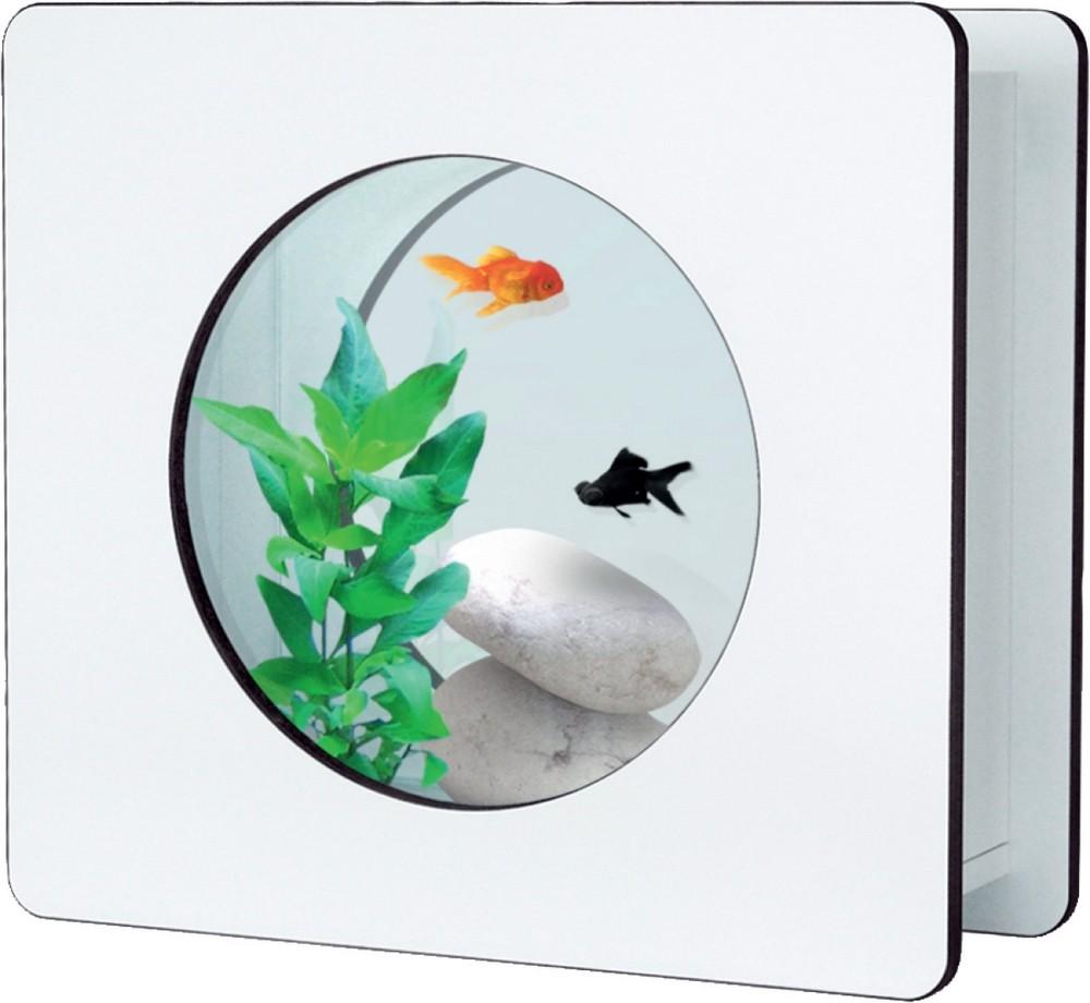aquarium 6l