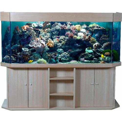 aquarium complet avec meuble