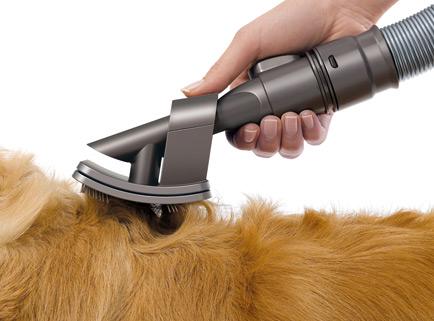 aspirateur poils chien