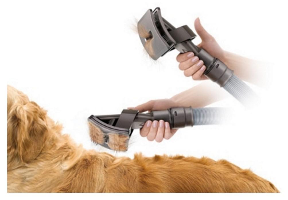 brosse dyson chien