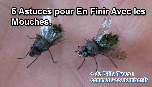 chasser mouches